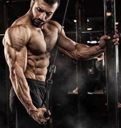 Izgradnja mišićne mase